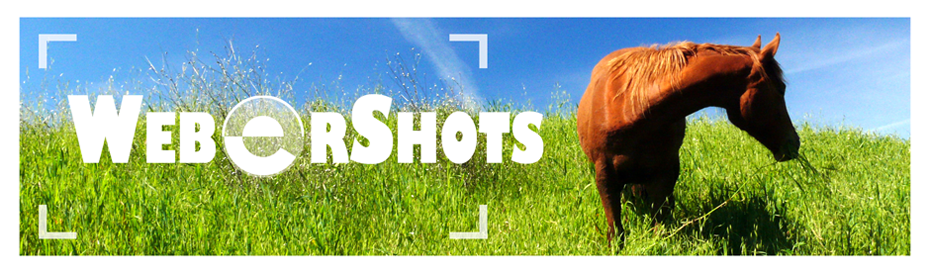 WeberShots