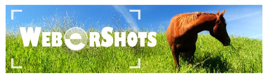 WeberShots