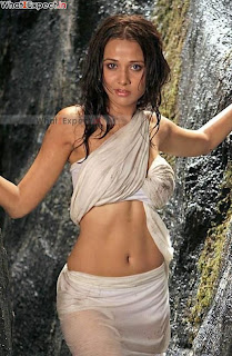 Nisha Kothari Hot Bikini Photoes