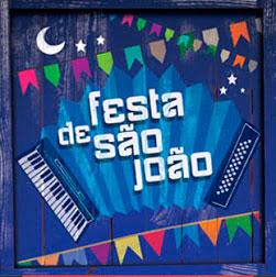 Baixar CD 0 s%C3%A3o V.A   Festa de São João (2013)
