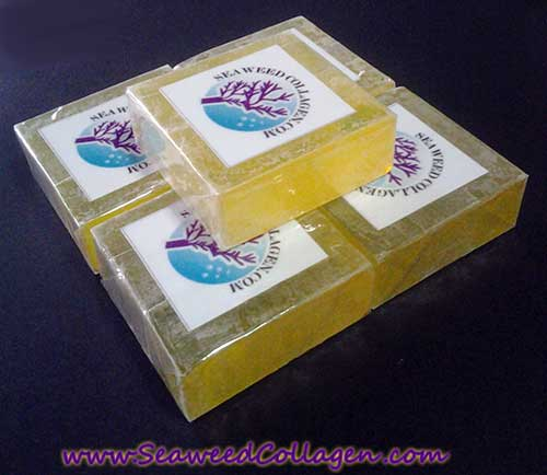 sabun pmc jerawat seaweedcollagen.com
