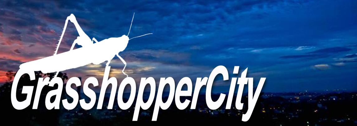 GrasshopperCity