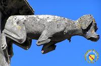 Toul - Cathédrale Saint-Etienne : Gargouille du cloître