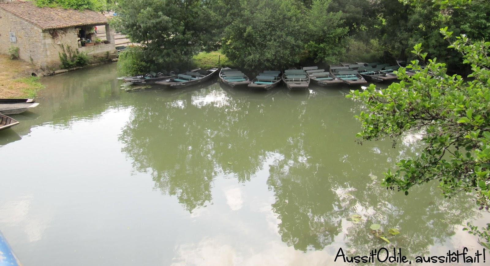 Aussit 39 odile aussit t fait le marais mouill chemins de terre et d 39 eau - Terre et eau witry les reims ...