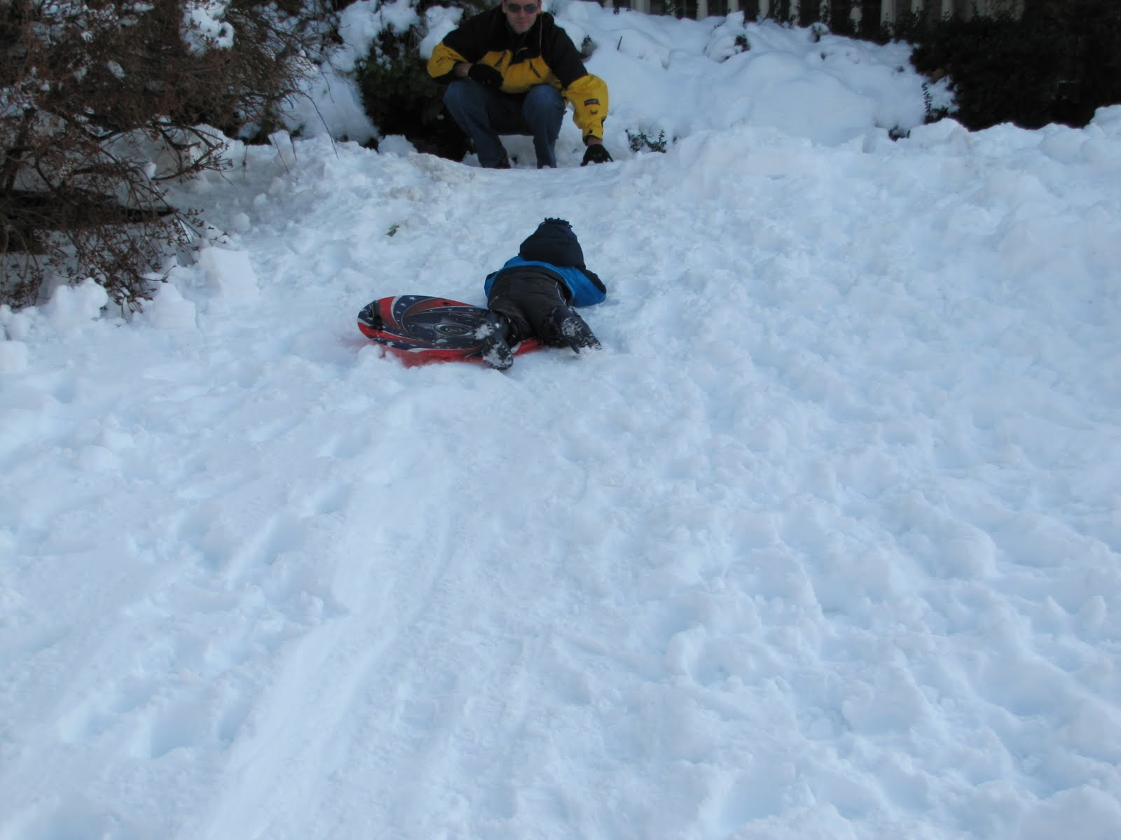 The Gregor Family: January 29th, 2011- More sledding and