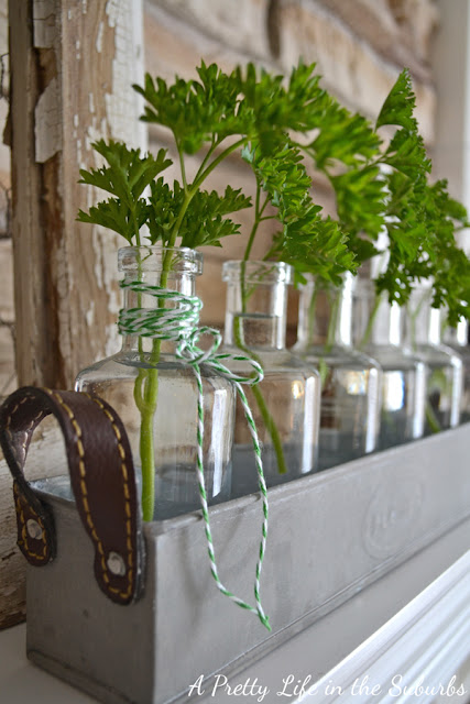 mantel decorating with fresh herbs