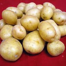 Как поливать и подкармливать картофель?