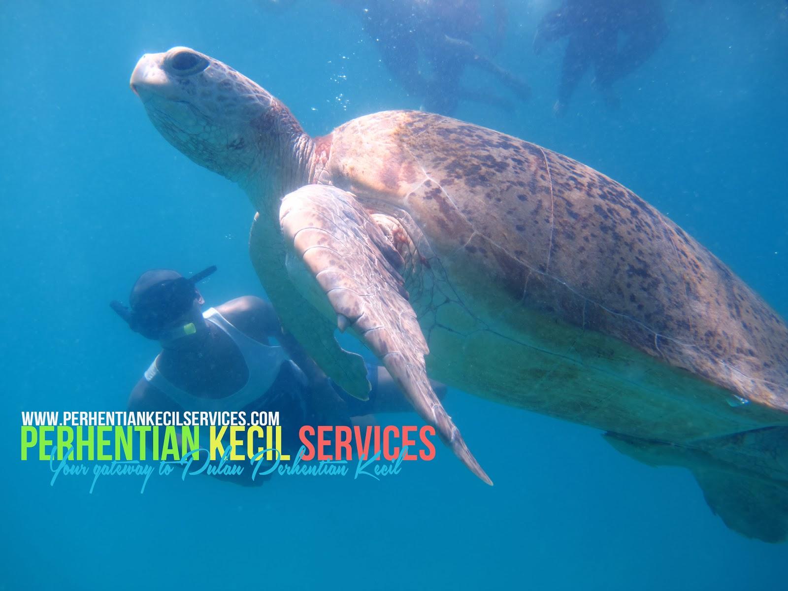 pakej 3 hari 2 malam snorkeling perhentian, pakej 4 hari 3 malam snorkeling pulau perhentian, pakej murah snorkeling perhentian, pakej bajet percutian perhentian, pakej percutian berkumpulan pulau perhentian, pakej murah pulau malaysia