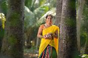 Tholi Sandhya Velalo Heroine Greeshma photos-thumbnail-5