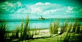 Island of paradise...