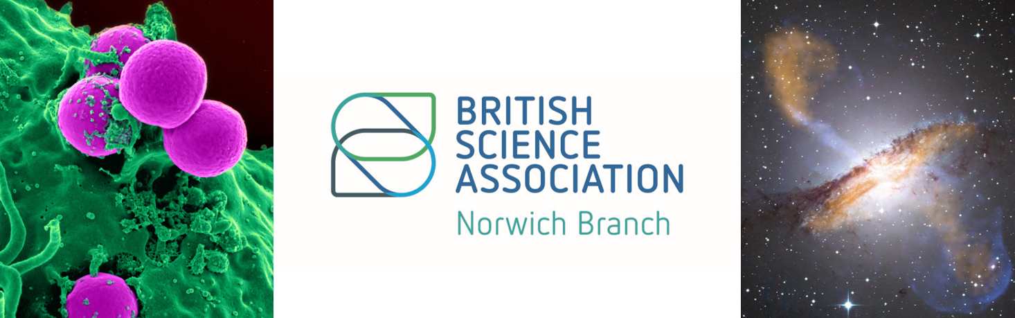 THE BSA NORWICH BLOG!