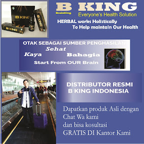 DISTRIBUTOR PUSAT BRAINKING PLUS