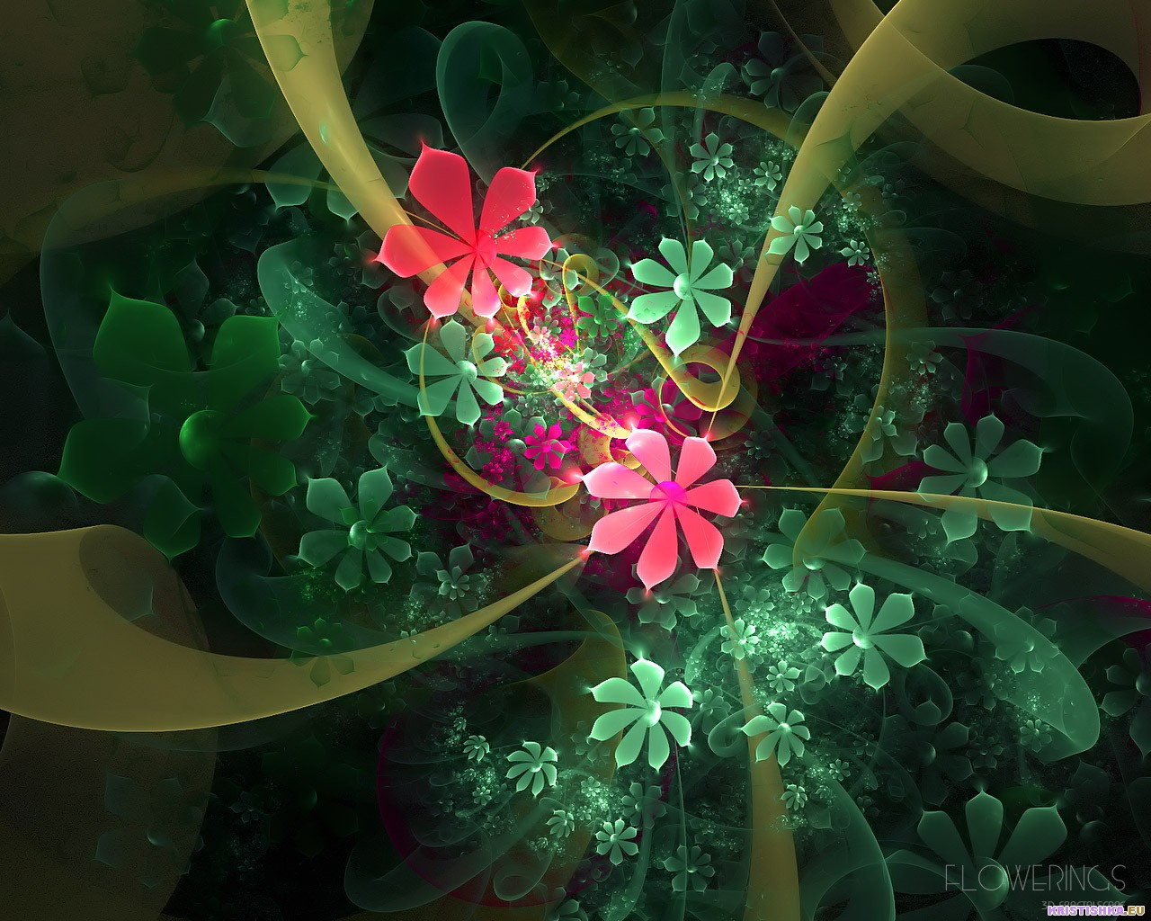 Kinds Of Wallpapers: 3D Flower Wallpapers
