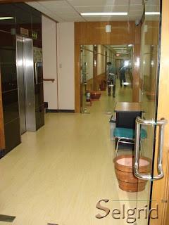 Lantai Kayu Solid atau Lantai Kayu Lamina - Yang mana lebih baik?