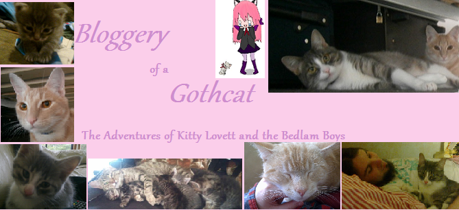 Bloggery of a Gothcat