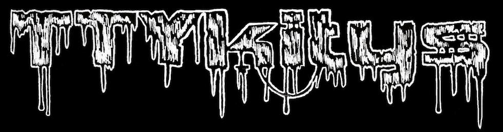 TTYkitys (English)