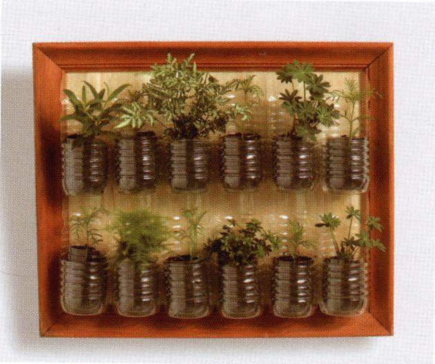 mini jardim em garrafas:Plastic Bottle Herb Garden