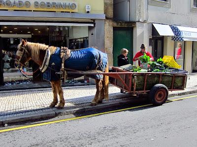 Comércio tradicional na Rua da Senhora da Luz