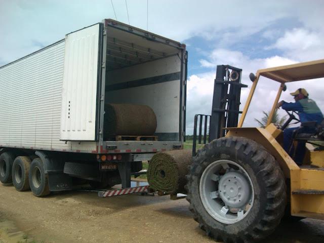 18 caminhões transportaram a grama para o estádio Nacional de Brasília