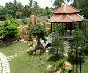 #10 Garden Design Ideas