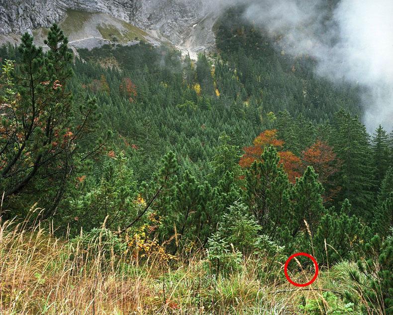 Puedes ver a los francotiradores en estas fotos