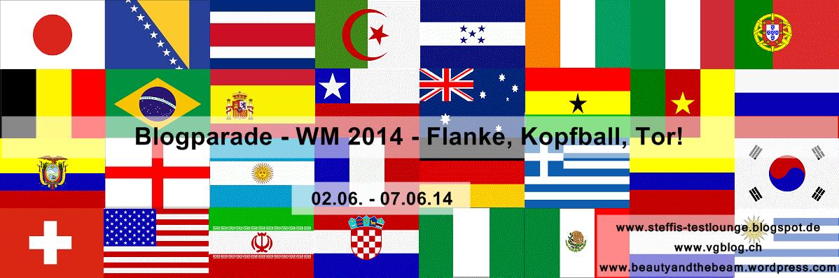 Best of lustigste Memes der Fußball WM 2014 Alaplaya