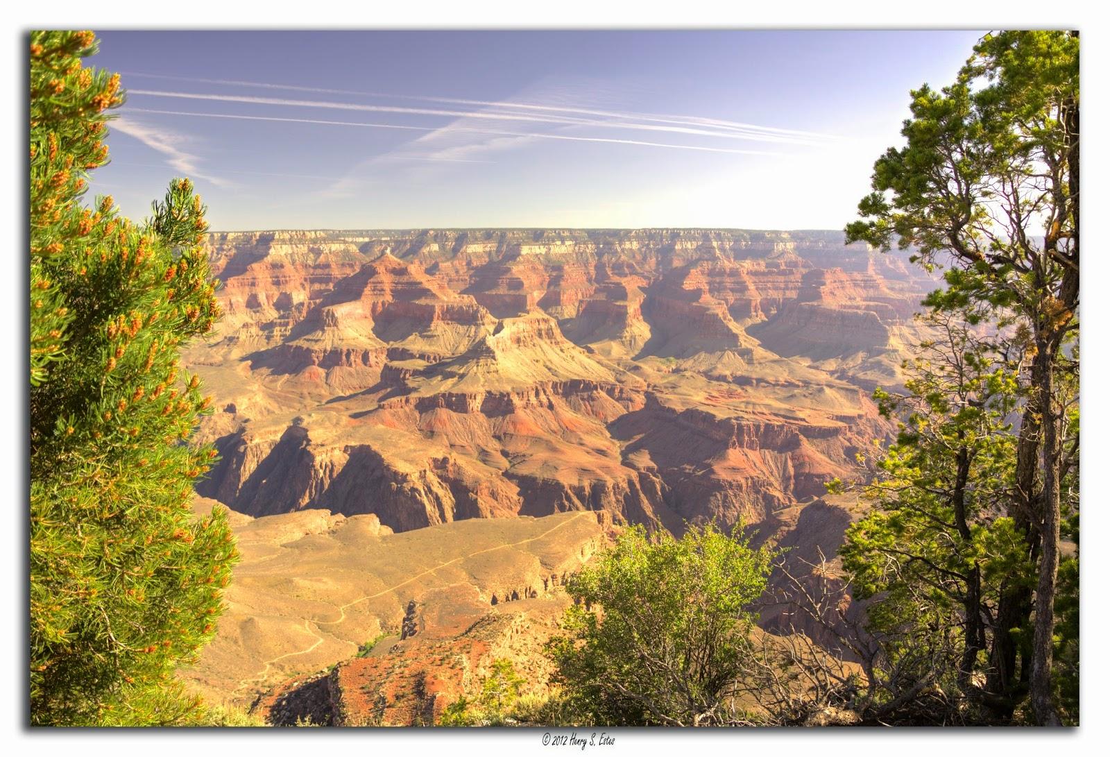Spring at the Canyon