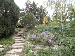 """""""Japanese Garden"""" on Margaret Island in Budapest."""