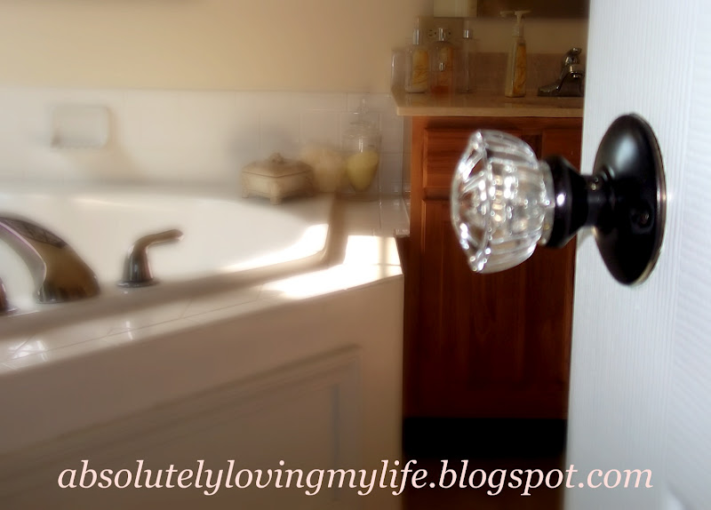 Loving Life Oil Rubbed Bronze Glass Door Knobs for Less