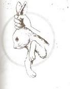 hati hati mengangkat kelinci bisa berakibat fatal