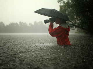 Rain wallpapers, images, pictures
