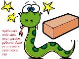 dizzy python