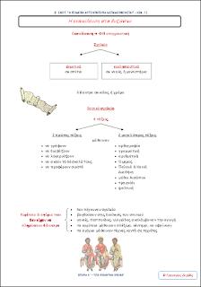 http://eclass31.pbworks.com/w/file/fetch/47667872/HISTORY%20E%20-%2012.pdf