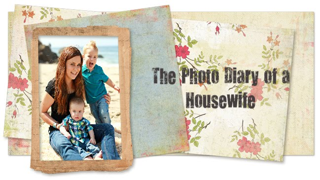 The Photo Diary of a Housewife
