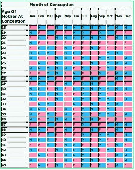 2013 pregnancy calendar calendar template 2016