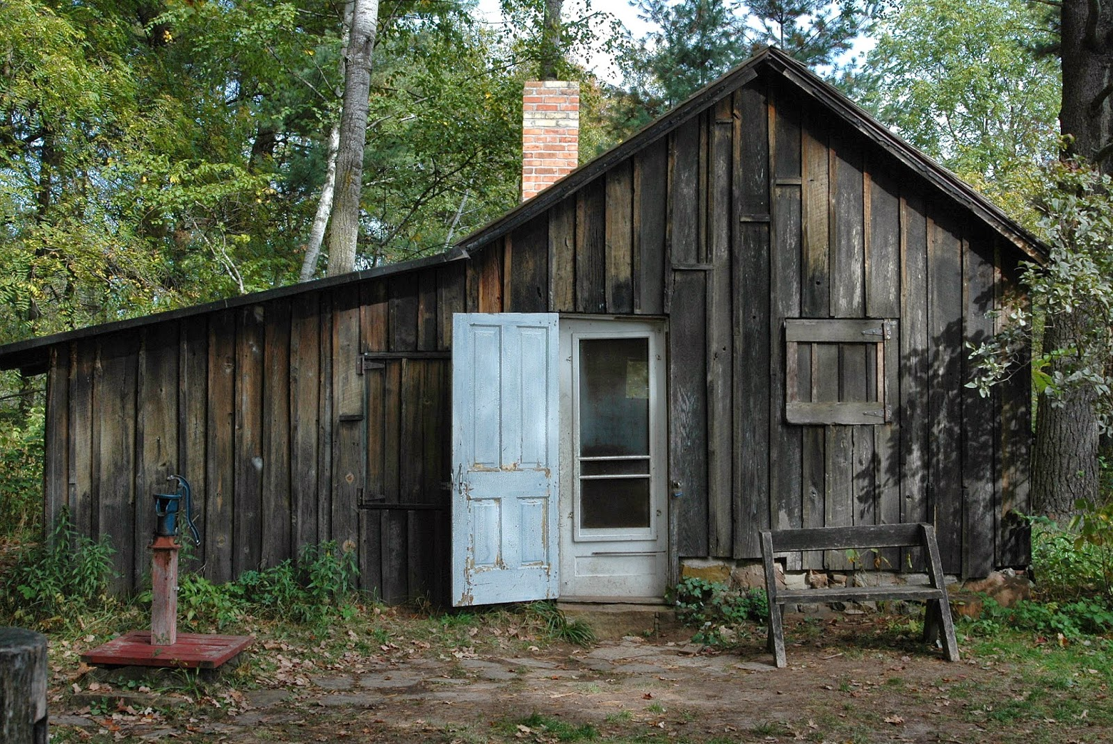 backyard beasts the shack