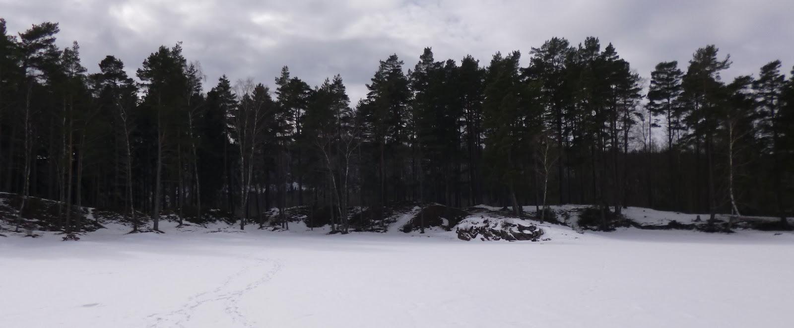 bosque suecia