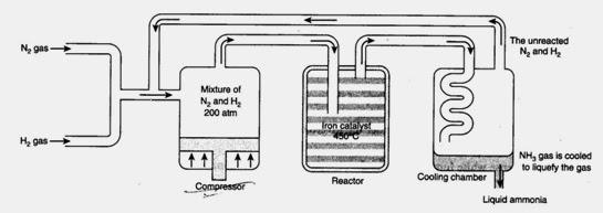 Proses Haber atau juga dikenali sebagai Proses Haber-Bosch adalah proses untuk menghasilkan ammonia