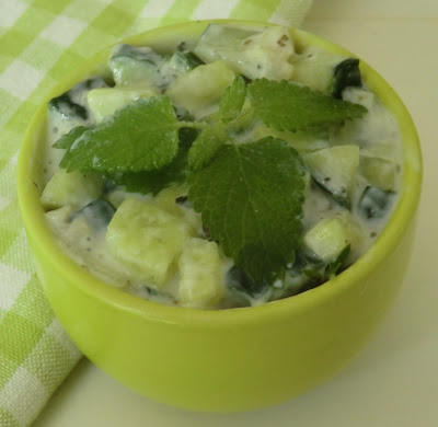 Tzatziki de concombre à la Mélisse sans lactose