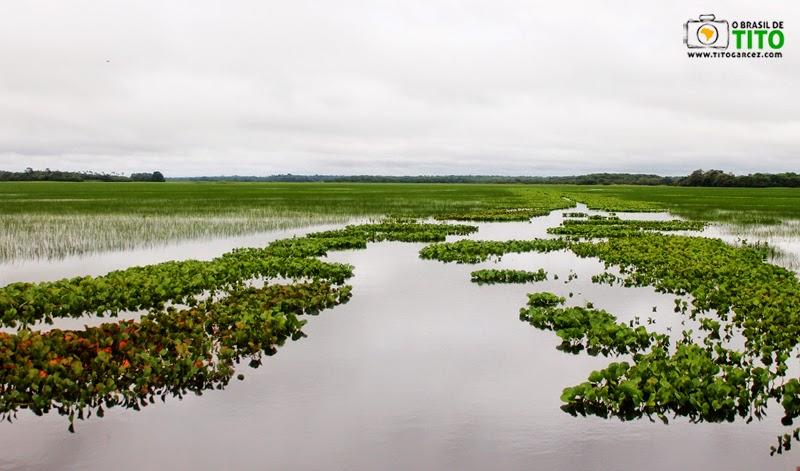 Balneário do Rio Curiaú, na APA do Rio Curiaú, em Macapá, no Amapá