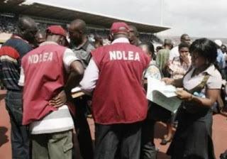 National Drug Law Enforcement Agent shot dead In Kano State