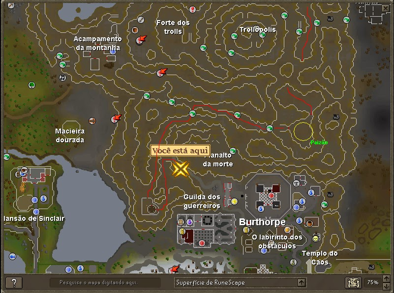 how to open the big map in runescape 07