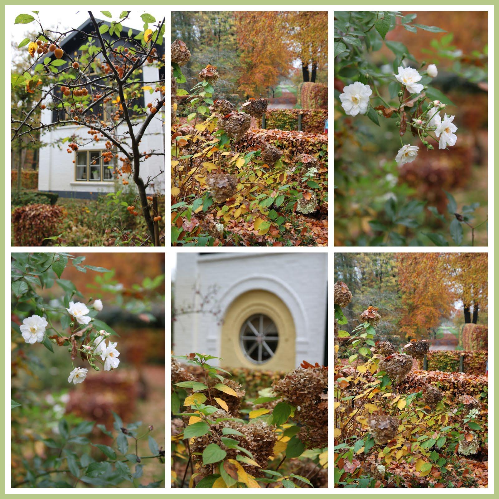 """""""November Tuin"""""""