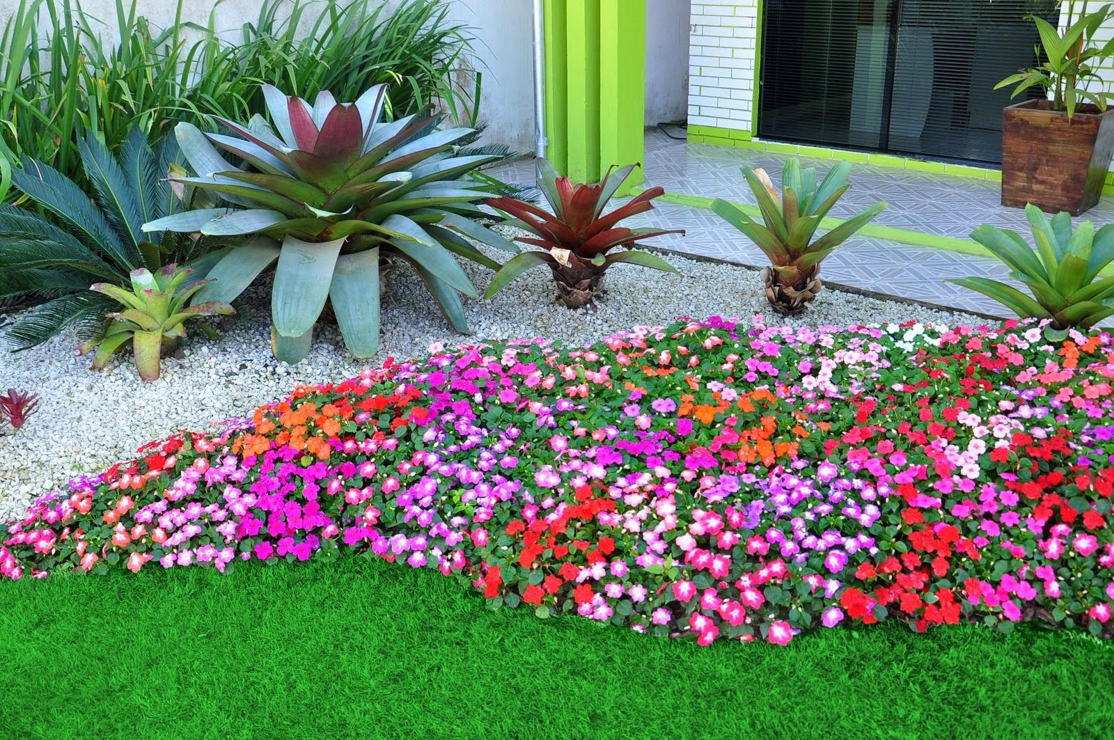TerraViva Como Plantar Um Jardim de Flores