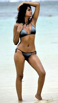 Shraddha Das Hot Bikini Poses
