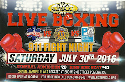 Live Boxing, Fist of Gold