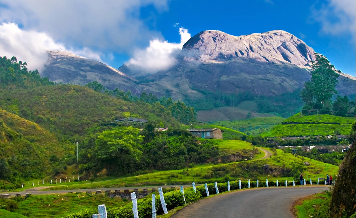 A View Of Munnar