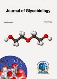 <b><b>Supporting Journals</b></b><br><br><b>Journal of Glycobiology </b>