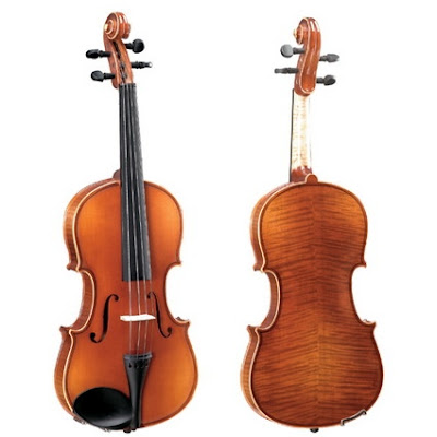 Pearl River Violin V019