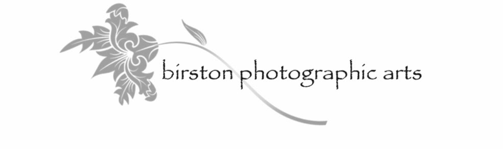Birston Photographic Arts